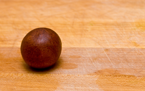 how to grow an avocado seed inside