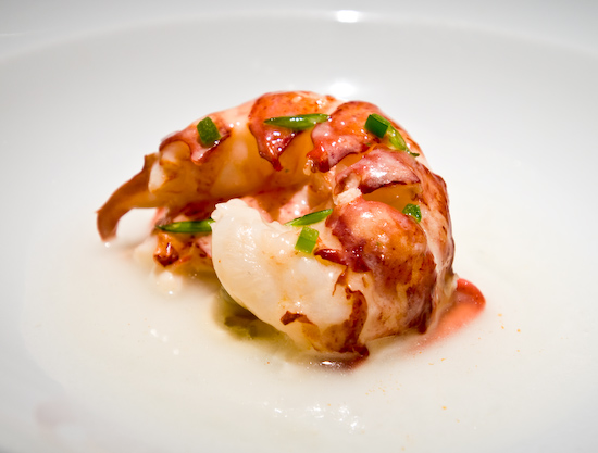 Parcel 104 - Coconut Butter Poached Maine Lobster