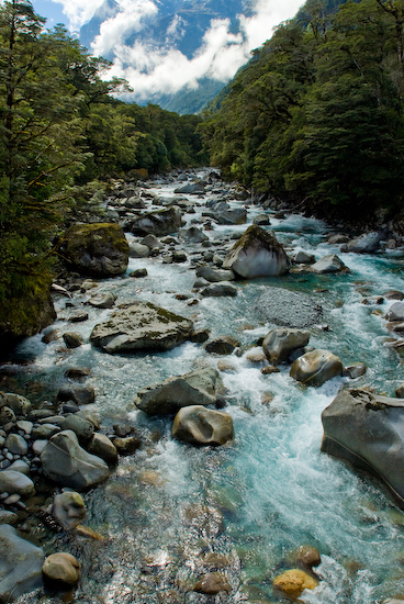 Fiordland, South Island, New Zealand