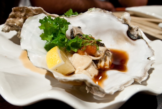 Ryu of Japan - Oyster