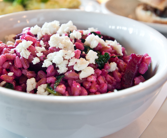 Il Cane Rosso - Roasted Beets & Farro