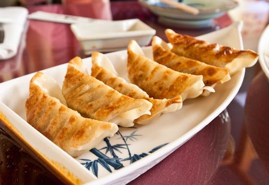 Shogun Sushi - Gyoza