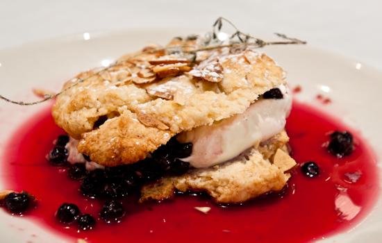 Perla's - Wild Blueberry Shortcake