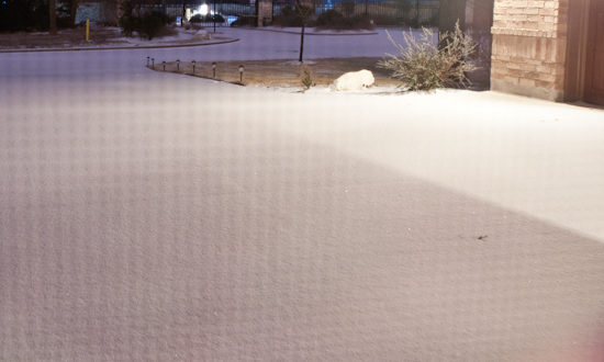 Snow - Closeup